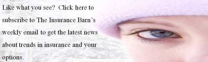 The Insurance Barn's Email Subscription