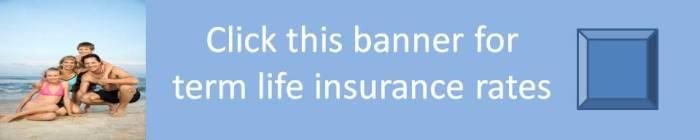 Term Banner 1